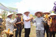 BP2TP Kuro Tidur Model Percontohan Global Pembangunan Desa Mandiri Pangan