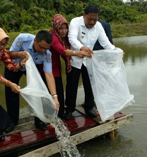 Bupati Bengkulu Utara Melakukan Penyerahan Bantuan Hak Atas Tanah Nelayan Tahun 2016.