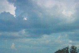 Pengumuman Calon Pendamping Kabupaten Bengkulu Utara